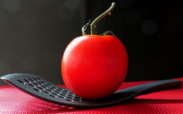 Saving the Tomato (Hebrew)